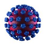 Lassa Fever Cell