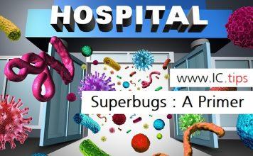 Superbugs : A Primer