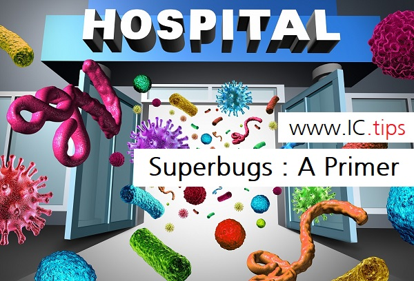 Superbugs : A Primer
