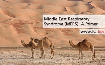 Middle East Respiratory Syndrome (MERS): A Primer