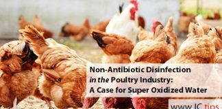 Non-Antibiotic Disinfection in the Poultry Industry: A Case for Super Oxidized Water
