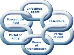 The Infection Chain