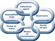 The Chain of Infection Model